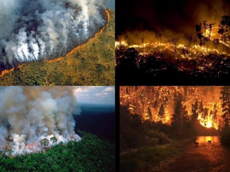 Solidaridad y oración por indígenas y la Amazonía